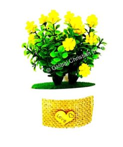 Flower pot with small yellow flowers