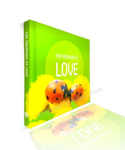 Love - The Treasure of Love